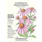 Sonnenhut Seeds - 500 mg - Echinacea