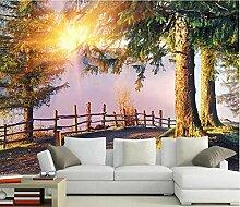 Sonnenlicht Waldlandschaftsmalerei Hintergrund 3D