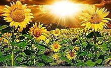 Sonnenuntergang Blume 3D Fototapete Wandbild Für