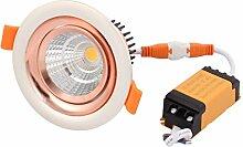 sourcing map LED Rampenlicht Lampe mit LED Treiber