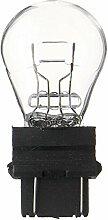 SPAHN-10 Stück Glühlampe 12V 32/2CP W2,5x16q