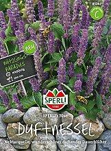 Sperli Duftnessel SPERLI's Blue
