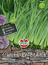 Sperli Schnitt-Knoblauch Fat Leaf