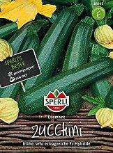 Sperli Zucchini 'Diamant', F1   frühe