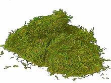 Sphagnum Moos grün getrocknet für Moosfiguren 1 kg