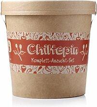 Spicy Garden Anzucht-Set für Chiltepin Chili - Pflanzen-Kit - Einstieg in die Planzen-Zucht - ideal zum Verschenken