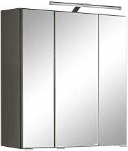 Spiegel Badschrank in Dunkelgrau 60 cm breit