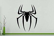 Spinne - Spinnentier Arachniphopia Käfer