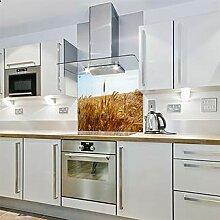 Spritzschutz für die Küche, aus Glas, 600 x 800