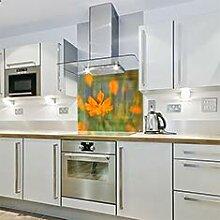 Spritzschutz für die Küche, aus Glas, 900 x 750