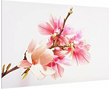 Spritzschutz Glas - Magnolienblüten 40 x 60 cm
