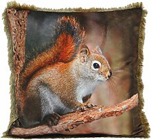 Squirrel Red & Brown Cushion Cover - 45x45cm