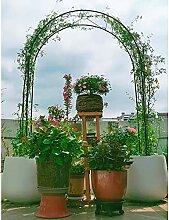 SSHHM Gartenbogen Gartenlaube Metall Robuste Home