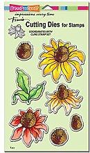 Stampendous Echinacea Schneiden sterben Set,