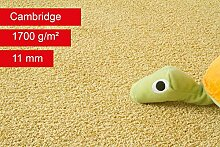 Steffensmeier Teppichboden Cambridge Meterware |