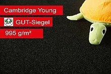 Steffensmeier Teppichboden Cambridge Young