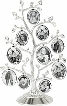 Stehrahmen Family Tree ClearAmbient