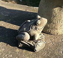 Stein Garten Frosch auf einem Log/Wildlife Teich