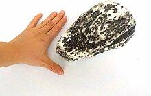 Stein grau keilförmig brekzie - Dekoattrappe aus