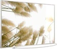 STEINFELD Heizsysteme Infrarotheizung, Glas Bild,