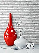 Steintapete Grau Schiefer , schöne edle Tapete im Steinmauer Design , moderne 3D Optik für Wohnzimmer, Schlafzimmer oder Küche inklusive Newroom Tapezier Ratgeber, mit Tipps für perfekteWände
