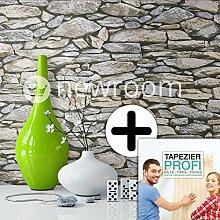Steintapete in Grau | schöne edle Tapete im Steinmauer Design | moderne 3D Optik für Wohnzimmer, Schlafzimmer oder Küche inklusive der Newroom-Tapezier-Profi-Broschüre, mit Tipps für perfekte Wände