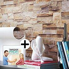 Steintapete Vliestapete Braun Rot Edel , schöne edle Tapete im Steinmauer Design , moderne 3D Optik für Wohnzimmer, Schlafzimmer oder Küche inkl.Newroom Tapezier Profibroschüre mit Tipps für perfekte Wände