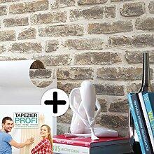 Steintapete Vliestapete Grau Beige , schöne edle Tapete im Steinmauer Design , moderne 3D Optik für Wohnzimmer, Schlafzimmer oder Küche inklusive Newroom Tapezier Profibroschüre, mit Tipps für perfekteWände