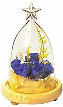 Sternform Glasabdeckung Landschaft Vase Kübelpflanze Blumendekor + Table