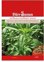 Stevia Samen - Pflanze rebaudiana - Honigblatt - Süßkrau