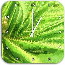 Stil.Zeit Aloe Vera Pflanze Pinsel Effekt, Wanduhr