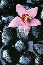 Stone Orchid // Fototapete Xl 115 x 175 cm //