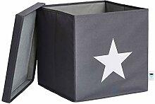 STORE.IT Ordnungsbox mit Deckel | Stern | extra