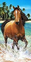 Strandtuch Pferd braun Handtuch, Frottee, Velours