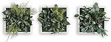 styleGREEN Pflanzenbild: Pflanzeninsel 22x22cm 3er