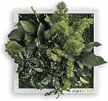 styleGREEN Pflanzenbild: Pflanzeninsel 22x22cm