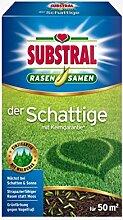 Substral Der Schattige Premium Rasensamenmischung Schattenrasen