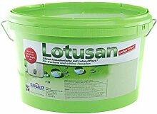 Südwest Lotusan Silikonharz-Fassadenfarbe 12,5