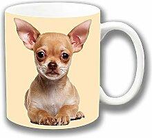 Süß Beige Chihuahua Welpen In Der Nähe Foto Druck Keramik Tee Kaffee Tasse Einzigartige Geschenkidee