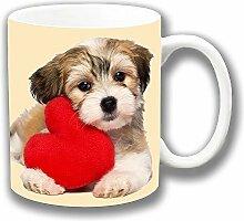 süß Havaneser Hündchen mit roter Herz Valentin Liebe Keramik Tee Kaffee Tasse Einzigartige Geschenkidee