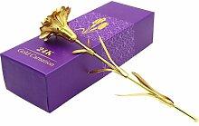 Süß Nelke Muttertag Geschenk 24K Gold Plated Dekoration goldene Blumen, Pretty zum Geburtstag Rose / Hochzeit / Freundin mit Luxus Geschenke Box (Nelke-Gold)