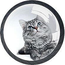 Süße Kätzchen Kristallglas Kommode Schublade