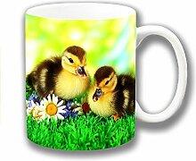 süße Neuheit Gelb Braun Gänseküken Entenküken