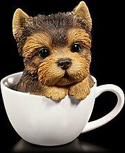 Süßer Yorkshire Terrier Welpe in Tasse | Figur