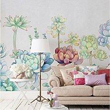 Sukkulenten Bunte Blume Tapete Fototapete Home