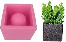 Sukkulenten Pflanzen, Vase Blumentopf,