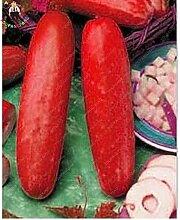 Sump 100Pcs Gurke Gemüsesamen für schönen