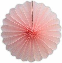 SUNBEAUTY 10er Set 23cm Tissue Papier Fans Fächer