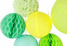 SUNBEAUTY 6er Set Grüne Deko Papier Blumen