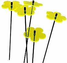 SunCatcher: SONNENFÄNGER 5er Set 'Blume'
